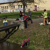 Several students take water samples near a stream.