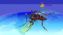 Image for GLOBE Mission Mosquito Campaign