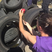 A teacher collecting mosquito samples from a tire.