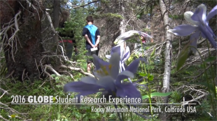 GLOBE Student Research Experience 2016