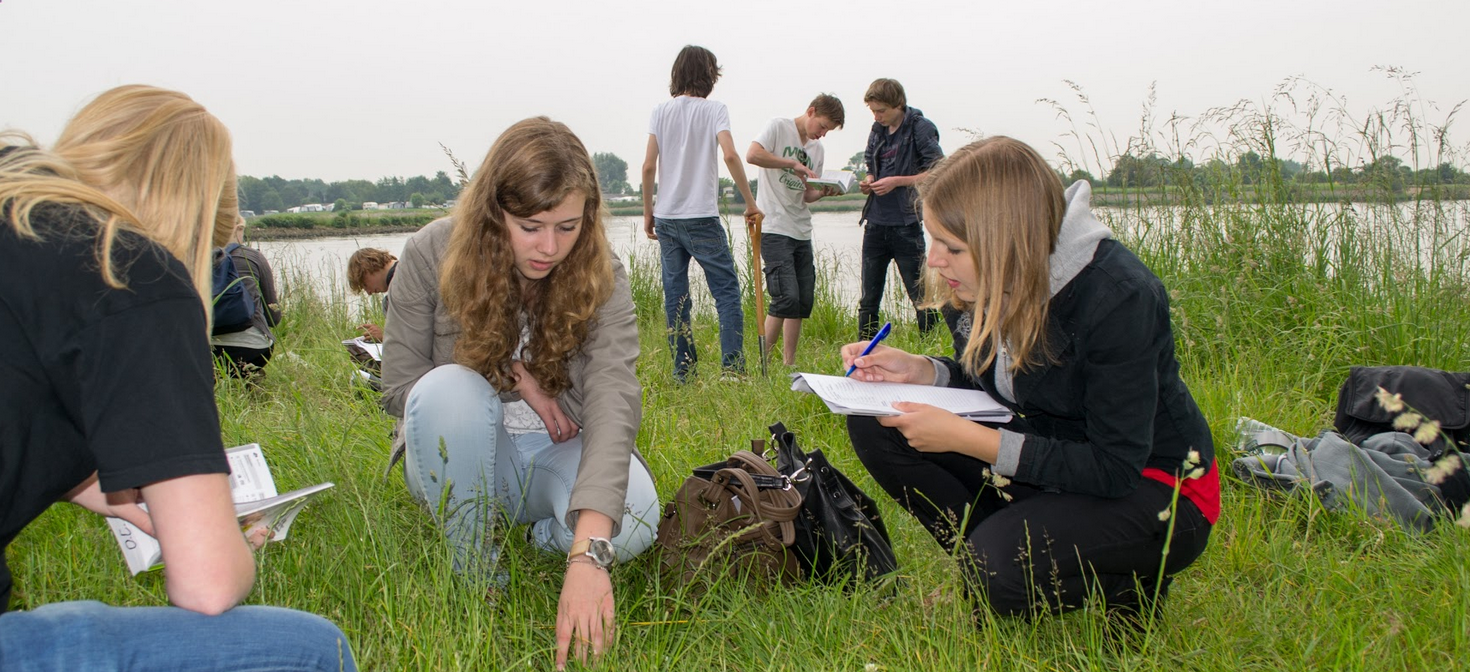 A group of students look over a field together near a stream.