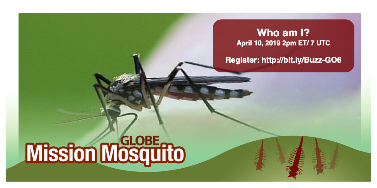 GLOBE Mission Mosquito webinar shareable