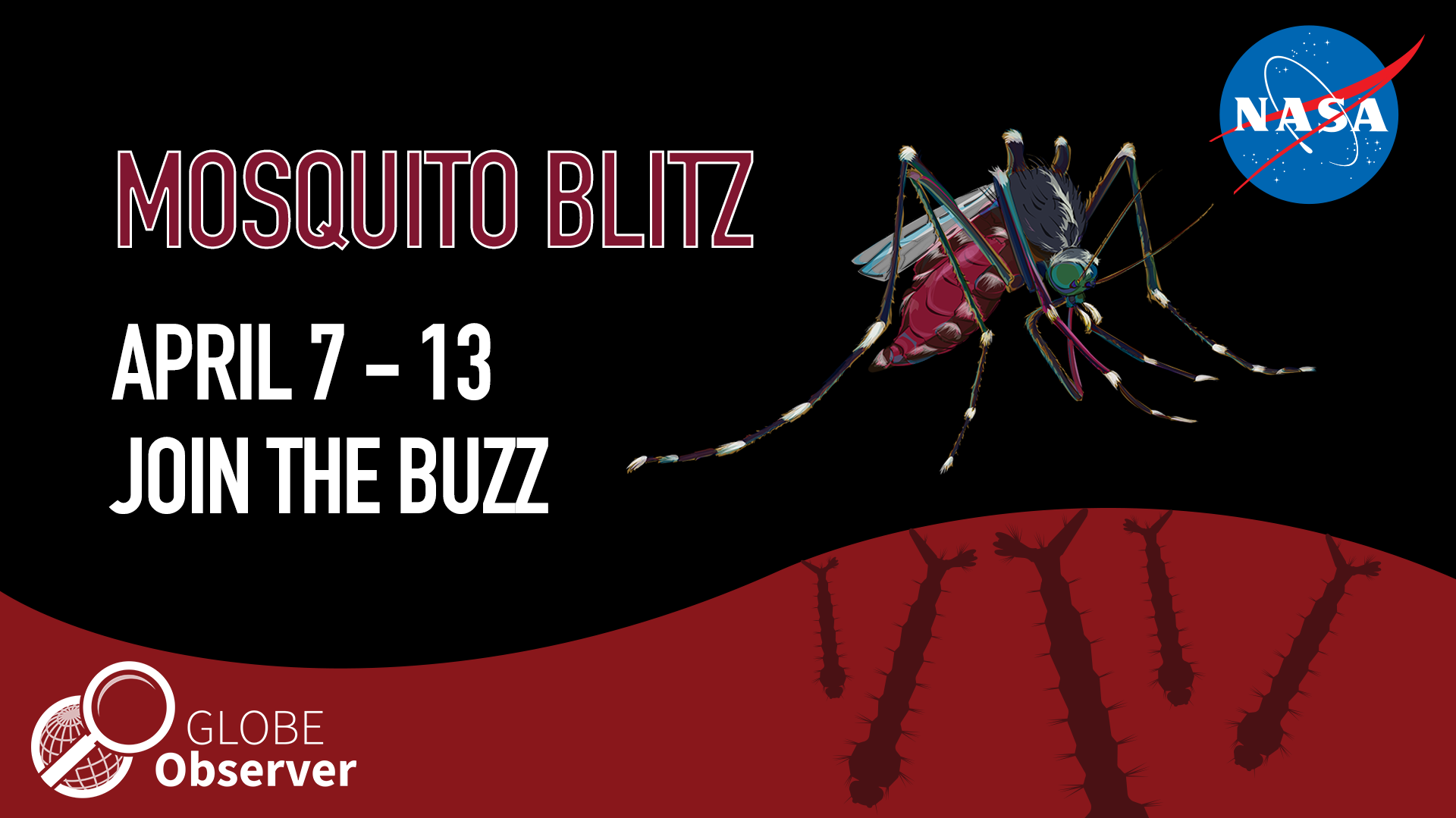 Mosquito Blitz shareable