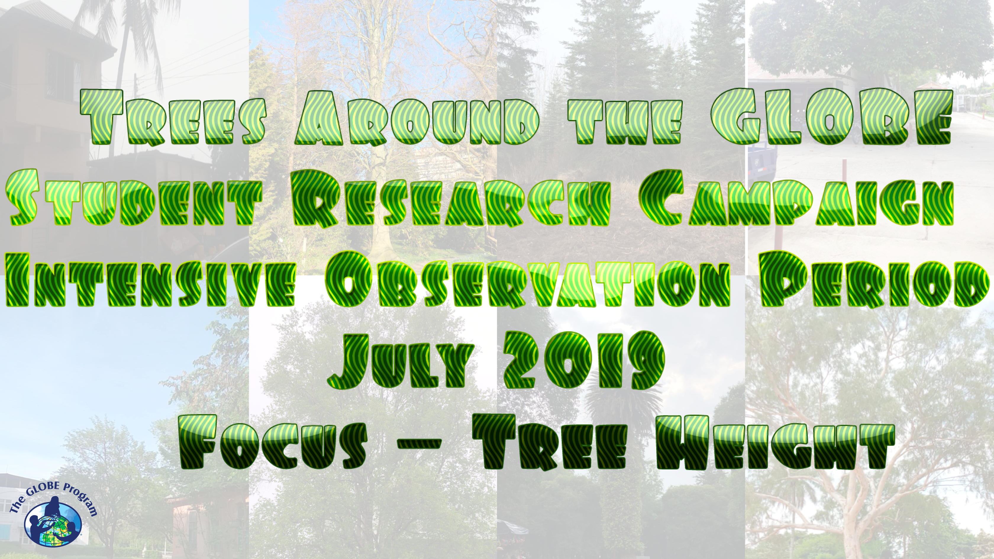 Trees Around the GLOBE Campaign July 2019 IOP shareable