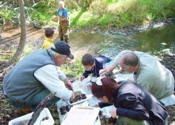 Photo of people working to monitor macroinvertebrates