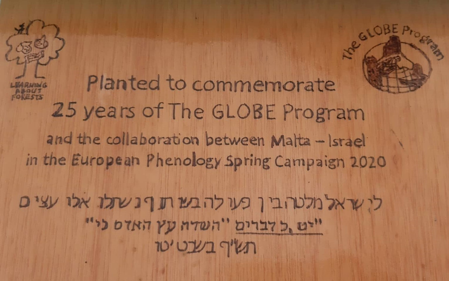 Plaque placed next to the planted tree in all four collaborating schools to commemorate the new international friendships and project.