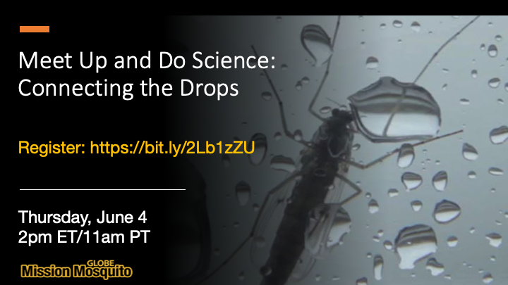 GLOBE Mission Mosquito 04 June 2020 webinar shareable