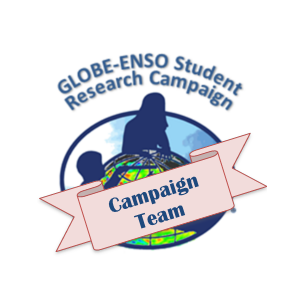 ENSO Team Member Badge