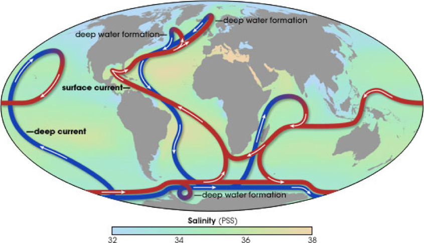 thermohaline circulation