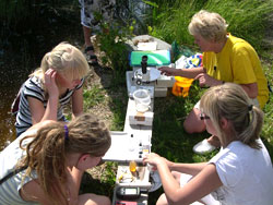 students doing science in a field