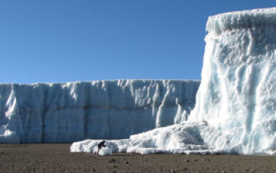 Glacier decreased by 40 meters in size from June 2008 to October 2009